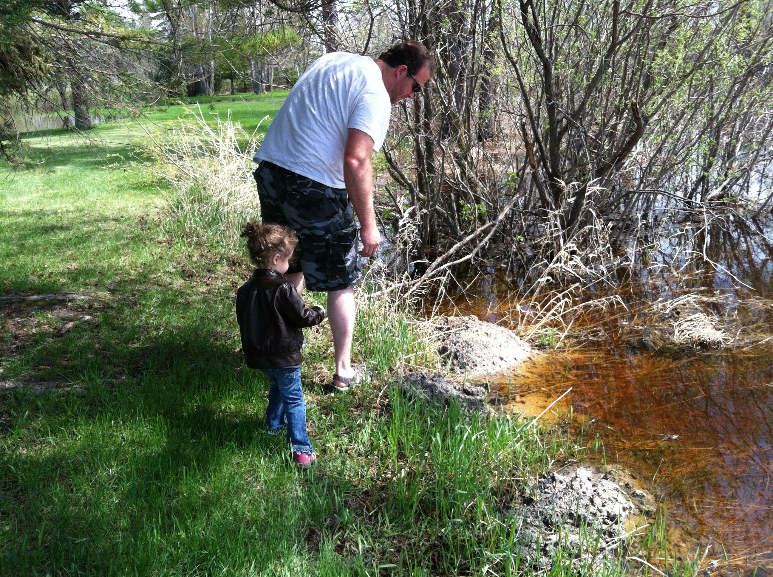 I had to ask Daddy to help with the frog catching - I saw so many and failed every time to actually get one!